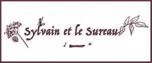 logo sylvain web